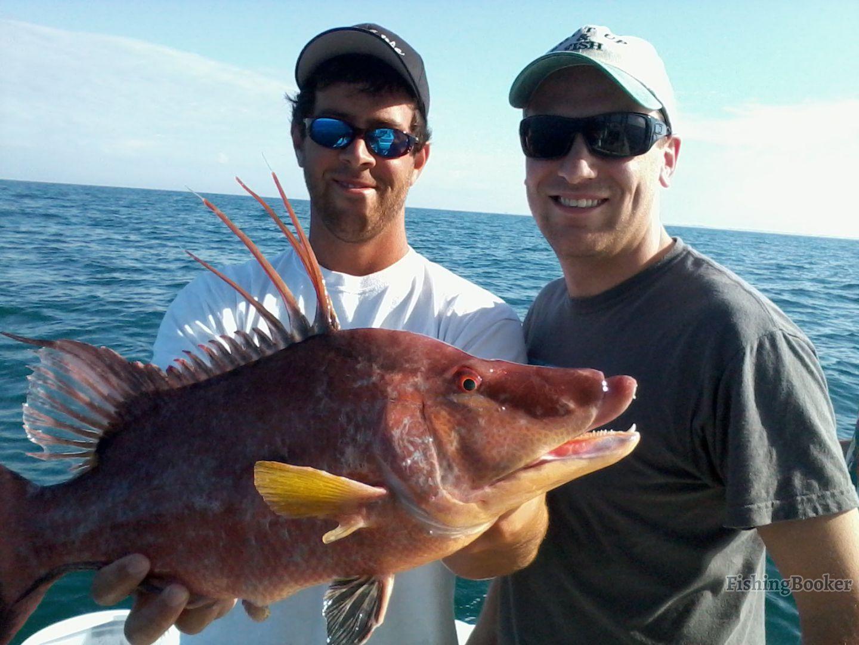 Fish pro charters fish guaranteed madeira beach for Deep sea fishing johns pass