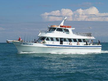Reward Fishing Fleet , Miami
