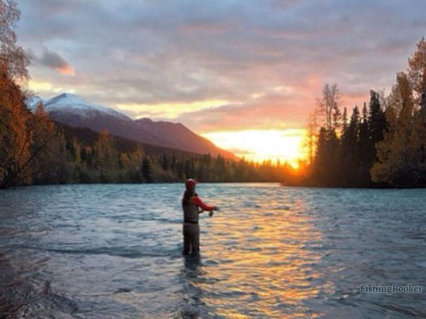 Cooper landing fishing guide llc cooper landing alaska for Cooper landing fishing guides