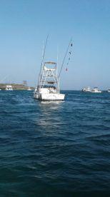 Albatross charters , Watamu