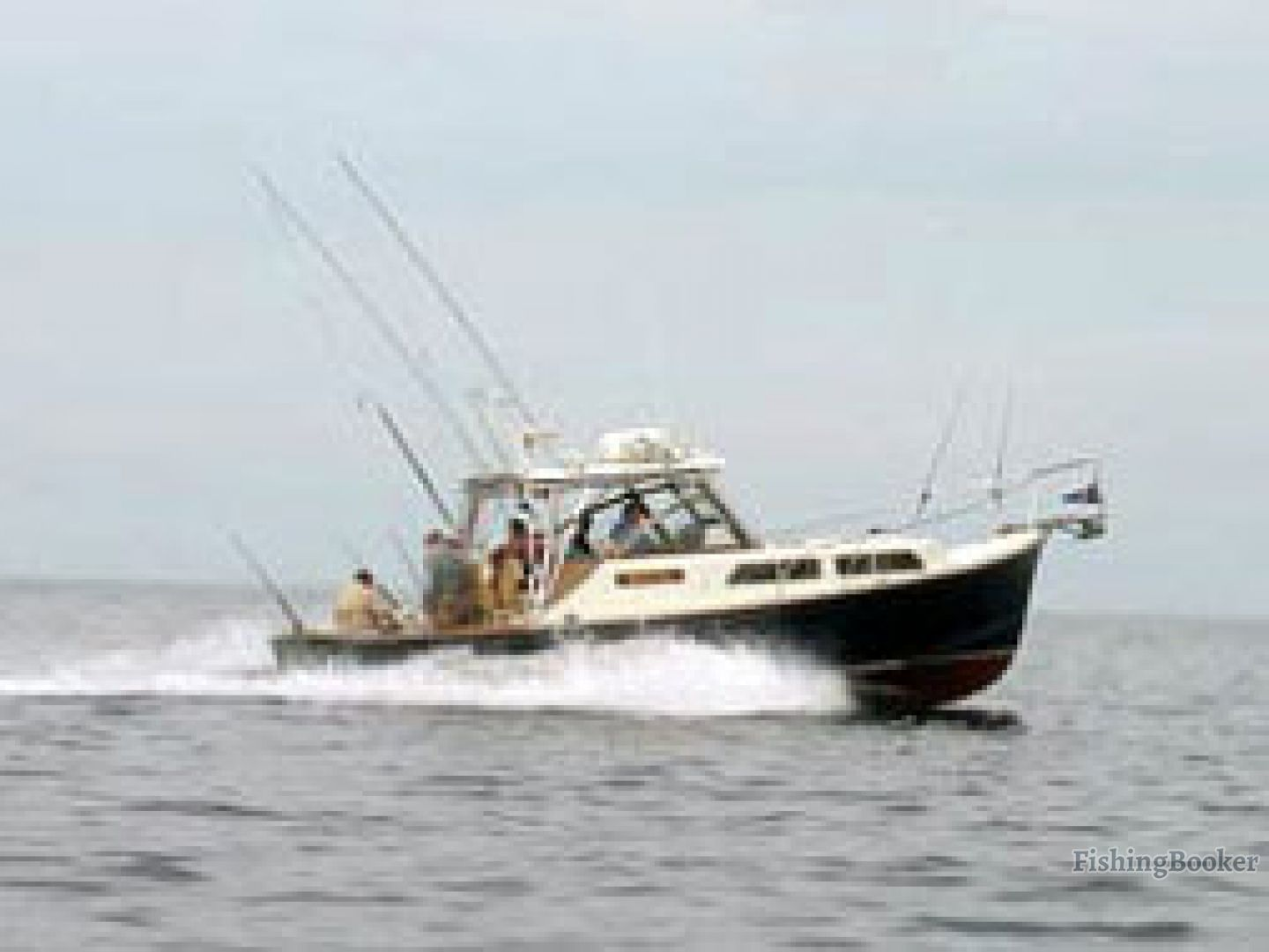 White cap charters scituate massachusetts for Fishing charters plymouth ma