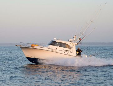 Blue Captures Fishing Charters, Olhão