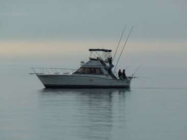 Renegade Sportfishing Charters LLC, Port Washington
