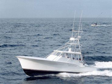 Spring Mix II Sport Fishing Charter, Ocean City