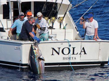 Nola - Brasilia Fishing Charters, Horta