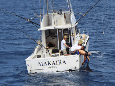 Makaira - Brasilia Fishing Charters, Horta