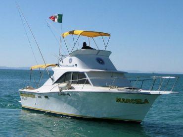 Mosquito Fleet - Marcela 28', La Paz
