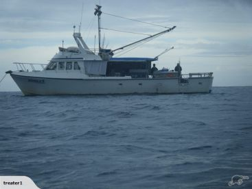 Bay Fishing Charters - Nimble II, One Tree Point