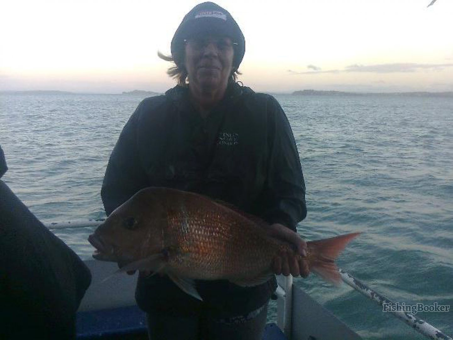 The red boats charters auckland new zealand for Fishing charters auckland