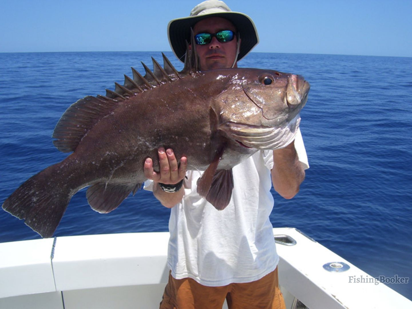 Capullo sportfishing tamarindo costa rica for Tamarindo costa rica fishing