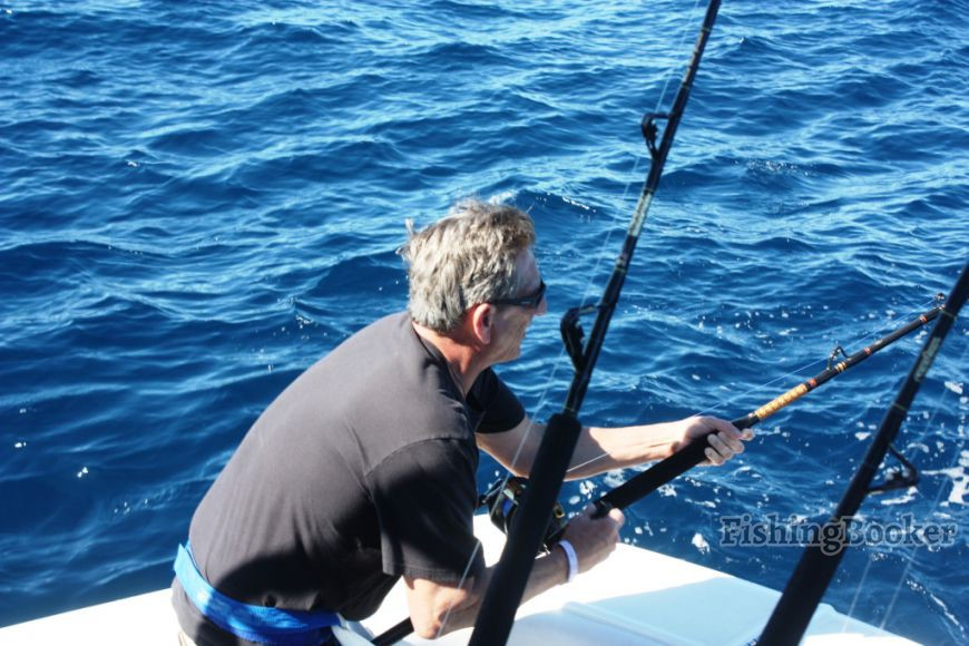 Cabo san lucas mexico fish report cabo san lucas for Cabo san lucas fishing report