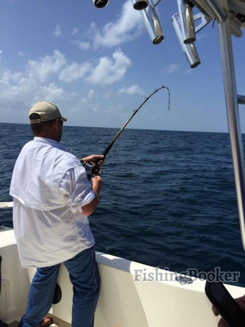 Sow snapper freeport fishing report for Fishing report freeport tx
