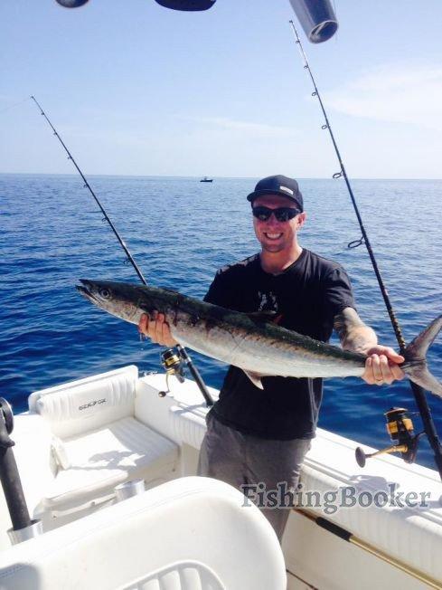 Sailfish dolphin and kingfish action jupiter fishing for Jupiter fishing report