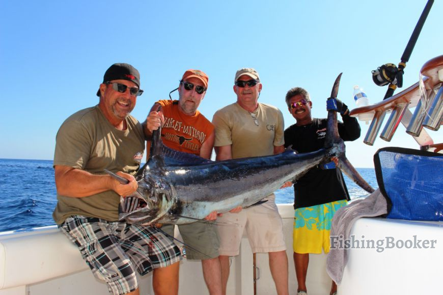 Big black and great blue marlin action cabo san lucas for Cabo san lucas fishing report