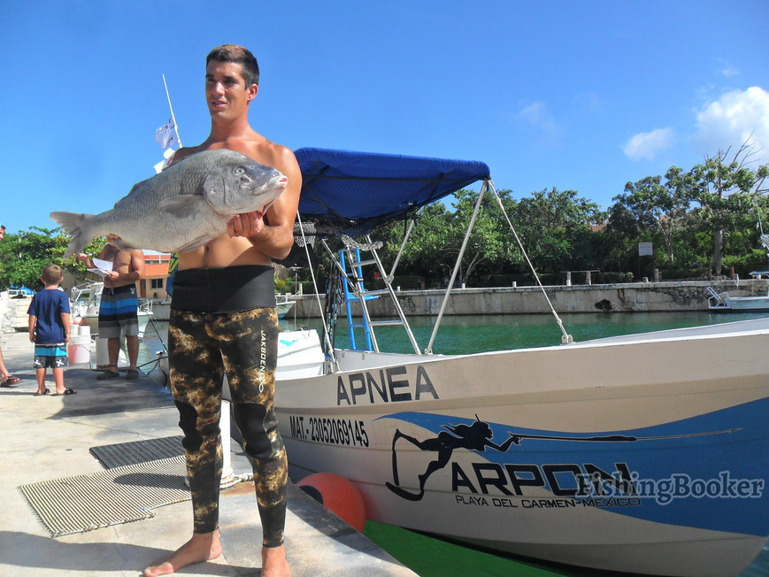 Top 10 fishing charters in playa del carmen mexico for Playa del carmen fishing charters