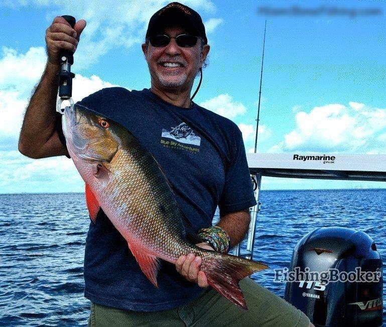 Miami snook fishing miami fishing report for Miami fishing report