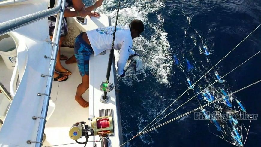 Today on teaser oranjestad fishing report for Fishing conditions today