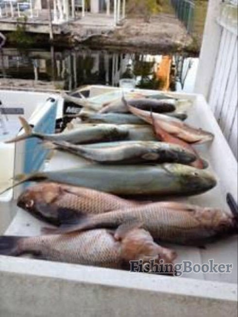 The weather big pine key fishing report for Big pine key fishing report