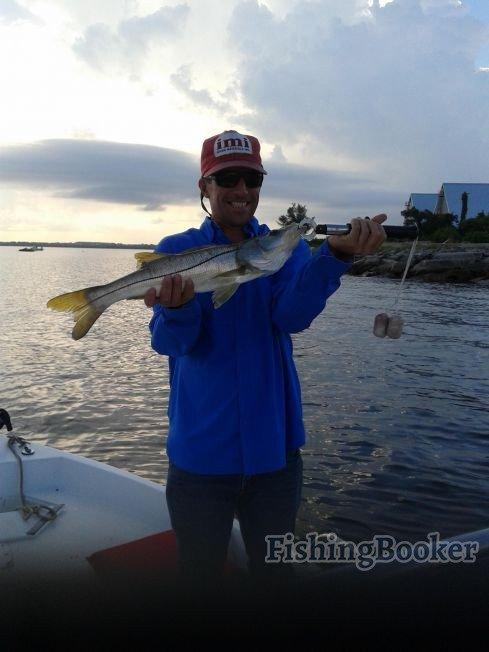 Reel till u feel charters tampa bay fis tampa fishing for Fishing report tampa bay