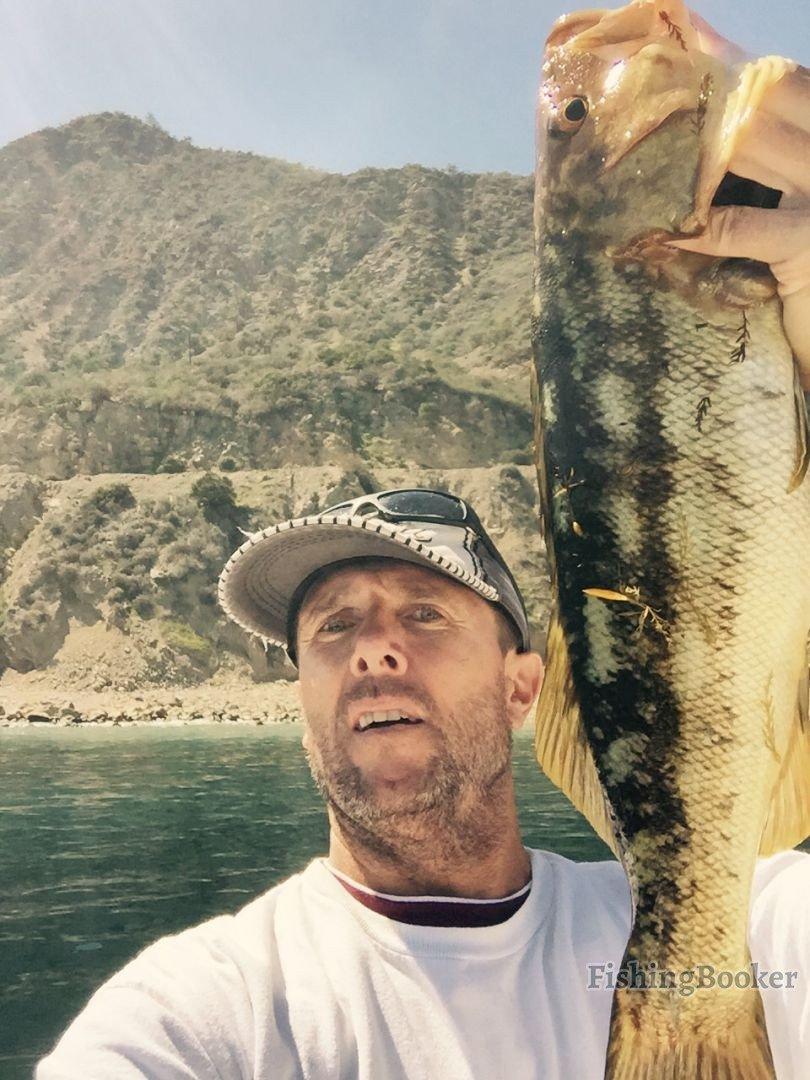 Calicos sheepshead and whitefish dana point fishing for Dana point fish report