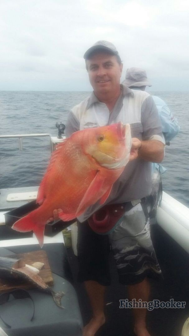 Durban fishing reports for Seven b s fishing report