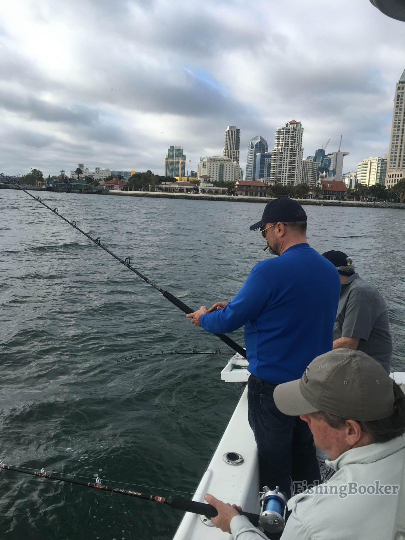 San diego bay halibut bite san diego fishing report for San diego fish report