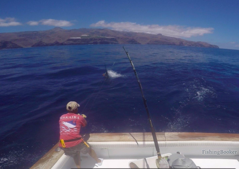 Report of the 3 june 2016 san sebasti n de la gomera for Sebastian fishing charters