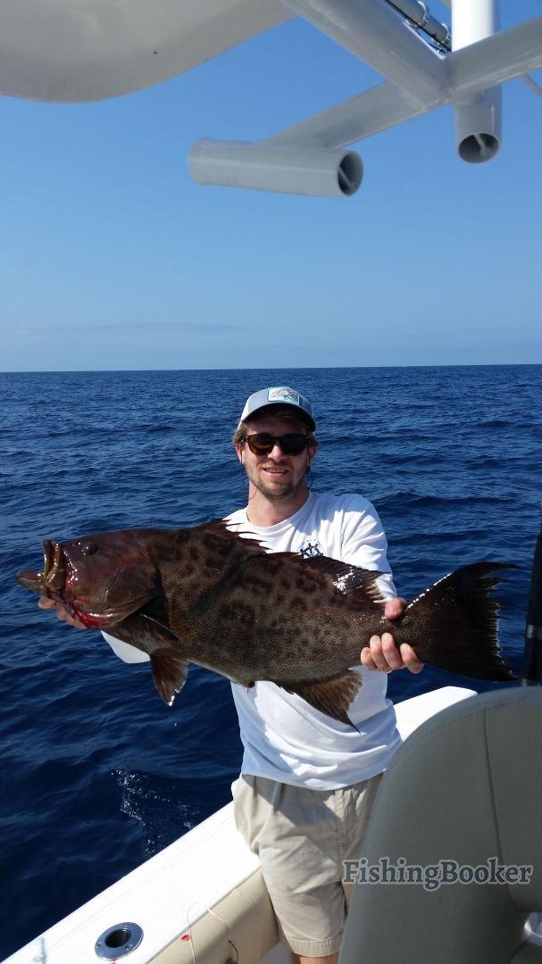 Fishing the offshore reefs charleston fishing report for Charleston fishing com