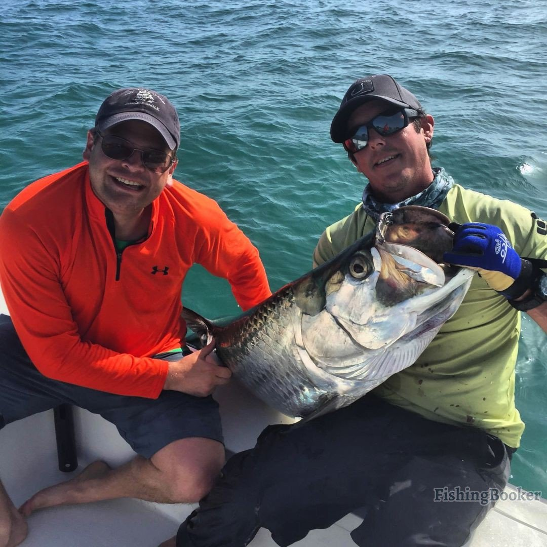 Tarpon st petersburg fishing report for St petersburg fishing report