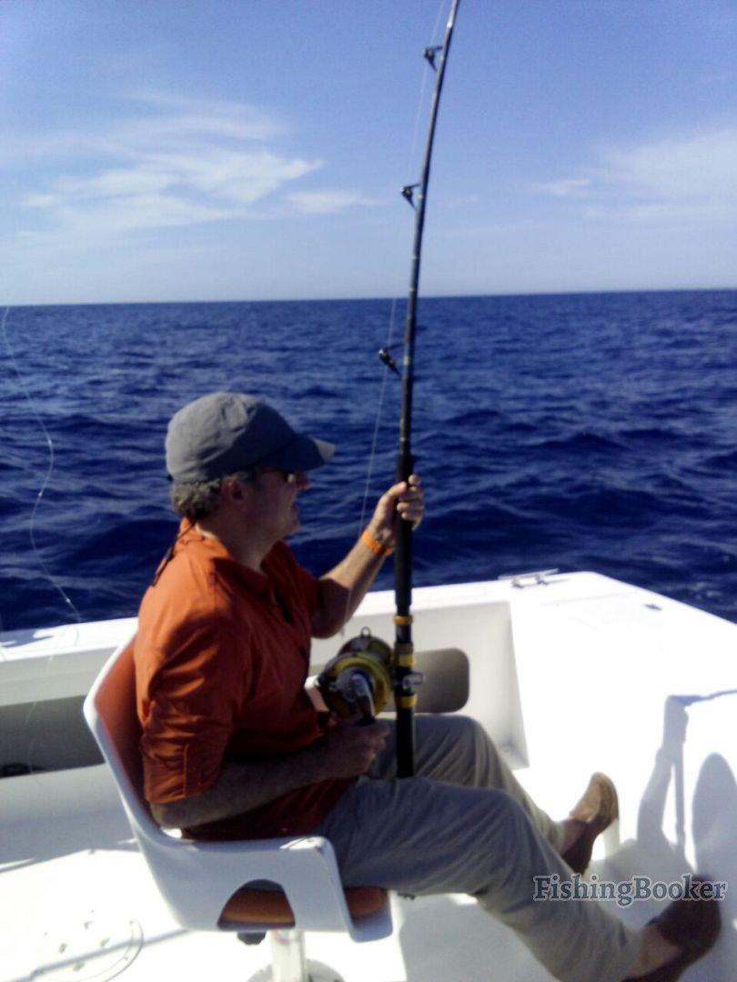 Cabo san lucas fishing reports for Cabo san lucas fishing season