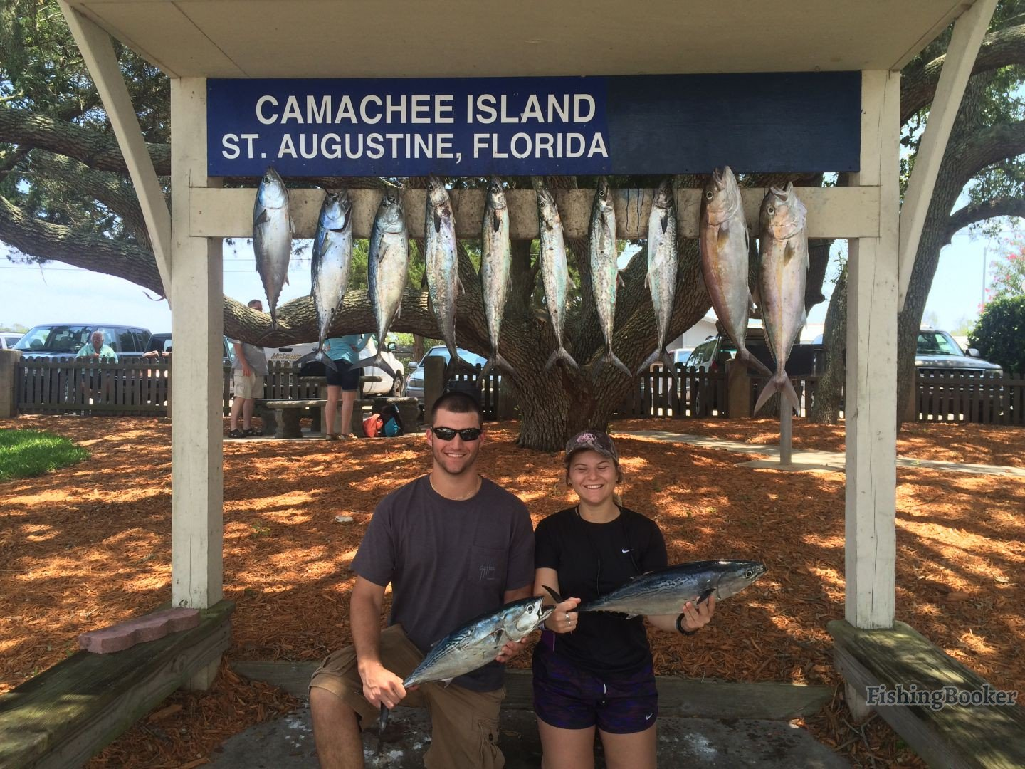 St augustine fishing reports for Fishing st augustine
