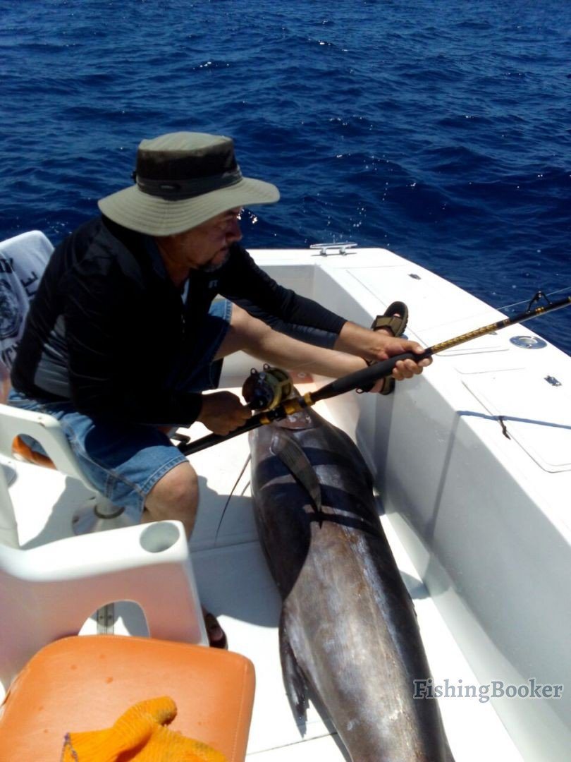 Cabo san lucas fishing reports for Seven b s fishing report