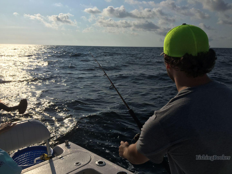 Orange beach fishing reports for Orange beach fishing