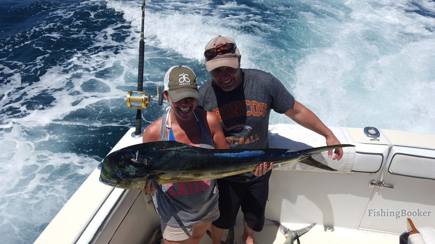 Fishing frenzy cabo san lucas fishing report for Cabo san lucas fishing report