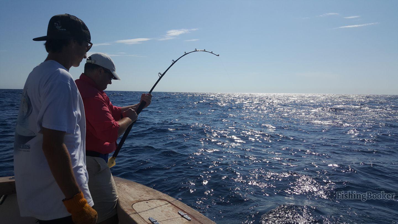 White marlin fever virginia beach fishing report for Va beach fishing