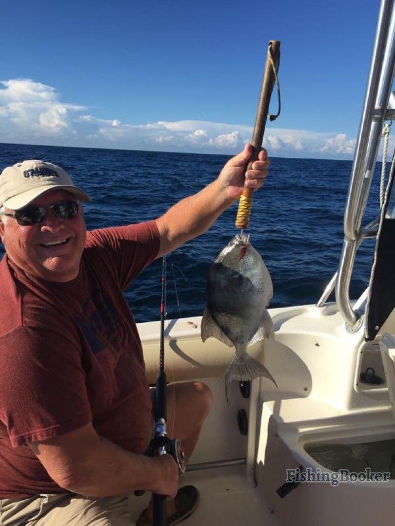Throwback thursday destin fishing report for Destin fishing forecast