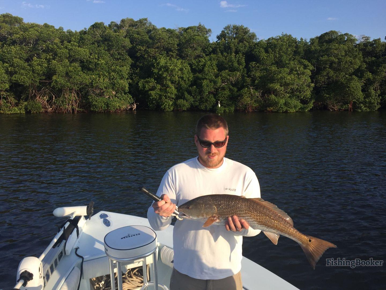 Inshore fishing tampa bay florida st petersburg fishing for Tampa bay fishing report