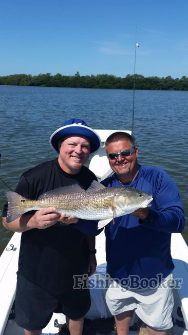 Redfish schools st petersburg fishing report for St petersburg fishing report