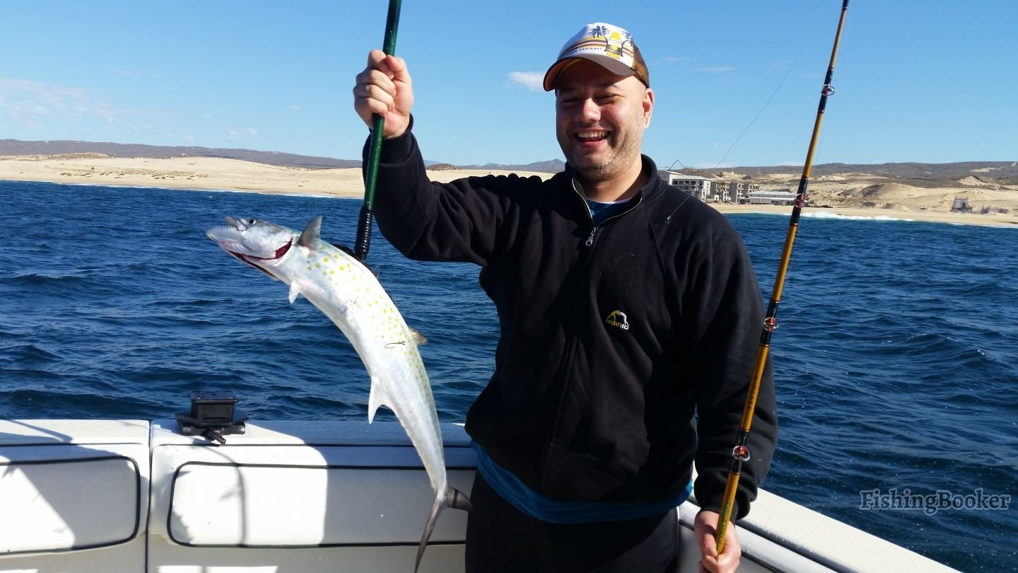 Slammin sierra cabo san lucas fishing report for Cabo san lucas fishing report