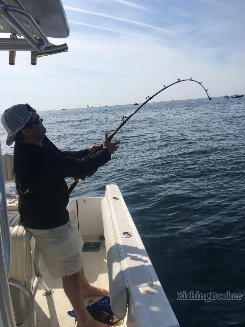 Tuna smash gulf shores fishing report for Gulf shores fishing report