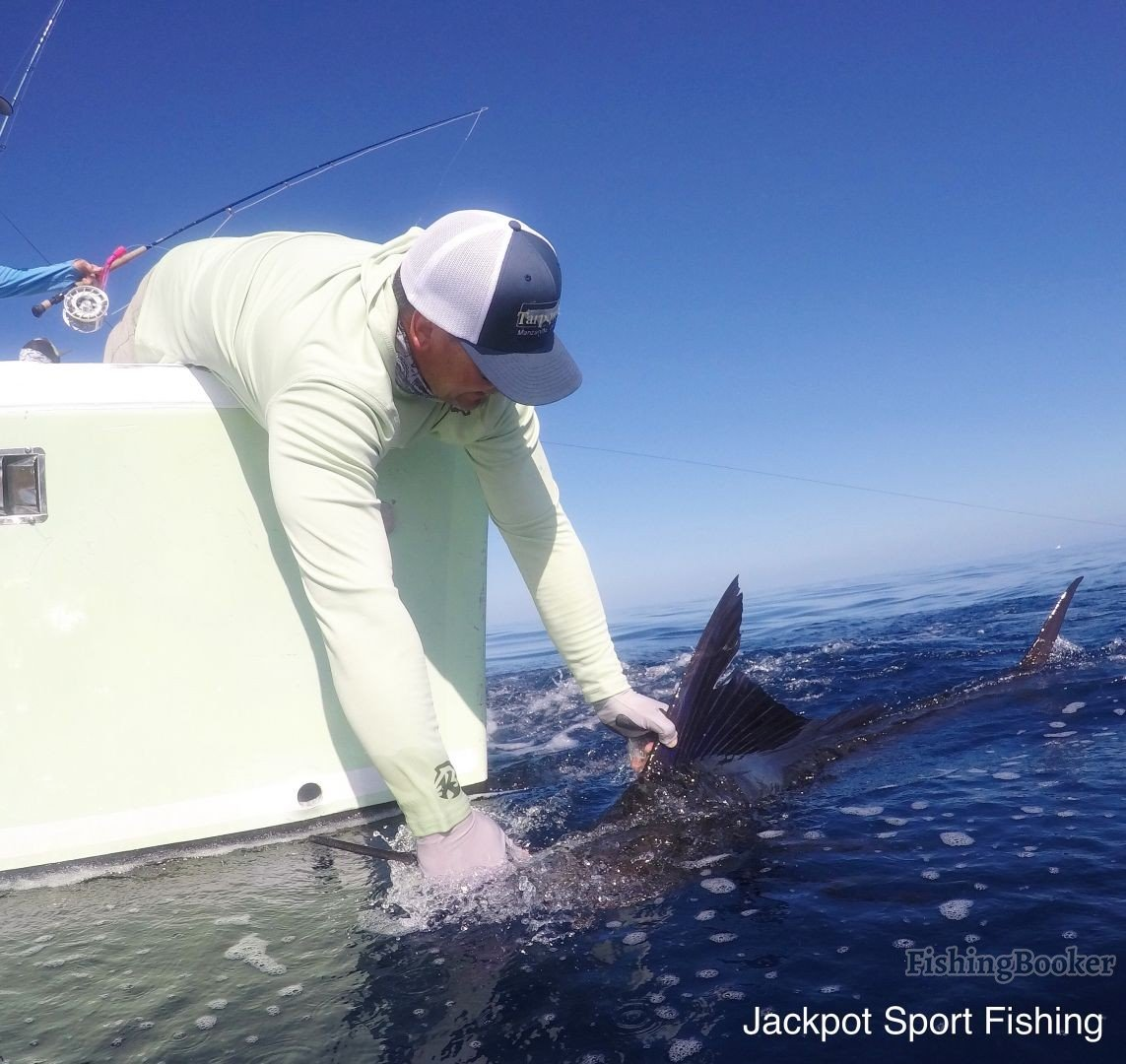Fly fishing for billfish aboard good day quepos fishing for Good day for fishing