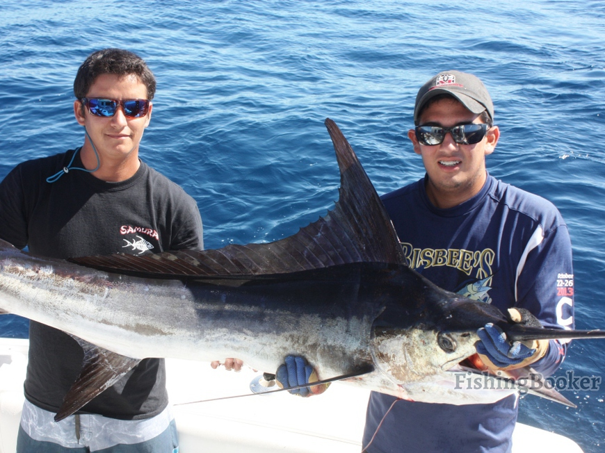 Double wahoo nice striper in cabo cabo san lucas for Cabo san lucas fishing report