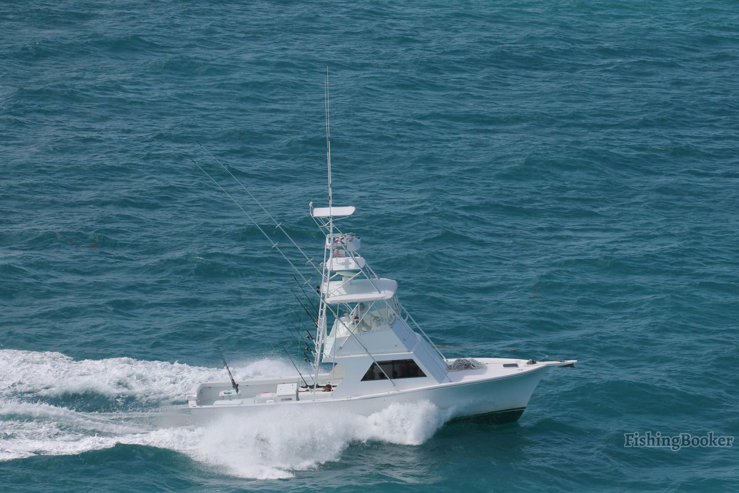 Southpaw fishing charters key west florida for Key west fishing boats